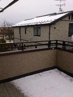 4.21 雪.jpg